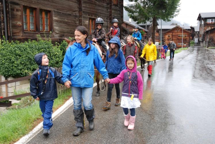 Trekking avec des mulets