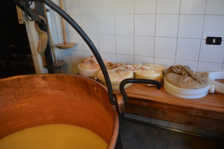 Alpen und Käse am Albrunpass