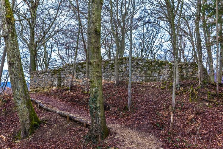 Ruine Horen