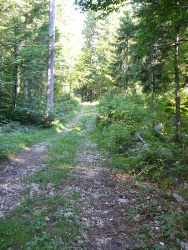 Sentier du Mas des Grandes-Roches, Le Brassus
