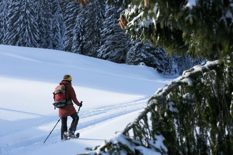 Randonnée en raquettes Blattenegg-Salwideli-Trail