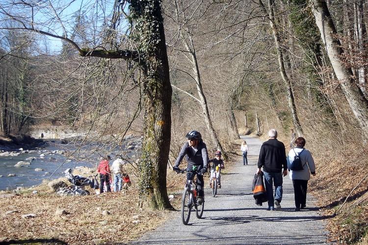 Giro in bicicletta Sihlwald