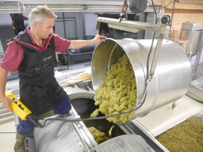Fürstliche Weinkultur
