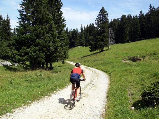 Grosse MTB-Route