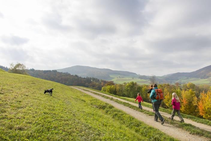 Natura Trail Jura argovien 2