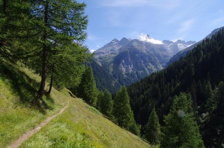 Grengiols - Col de Saflisch