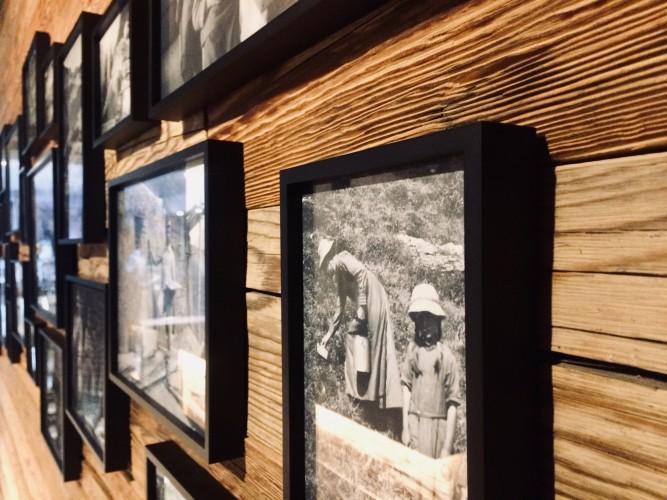 Ausstellung Alpine Welt