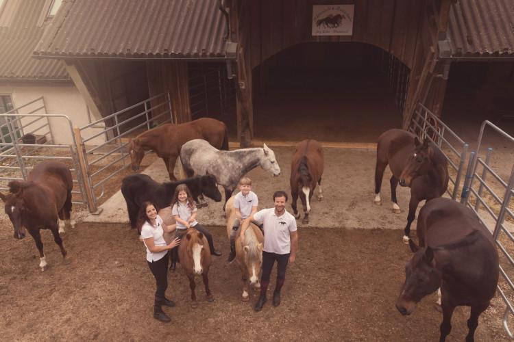 Pferde hautnah erleben