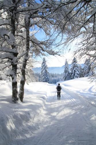 Traversée du Parc Jura vaudois à ski de fond