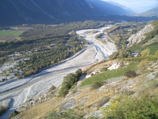 Site protégé du Bois de Finges
