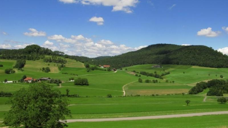 Geschichte, Wein & Landschaft