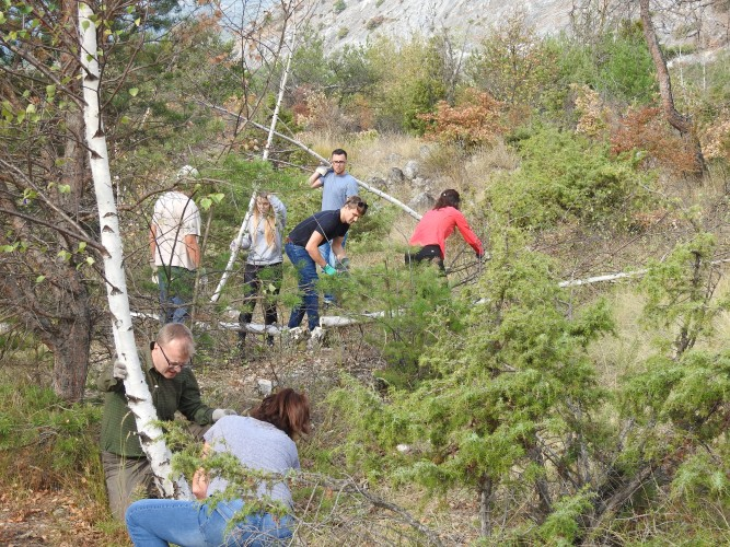 Natureinsatz: Gruppe & Schule