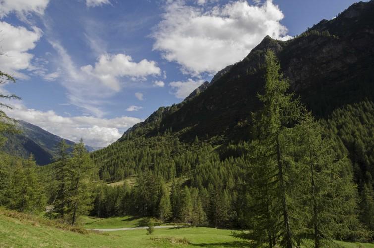 Osteria delle Alpi