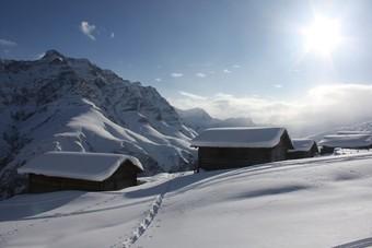 Schneeschuhtrail Camana kurz