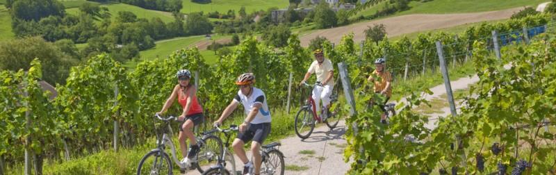 Hügelzüge im Jurapark Aargau