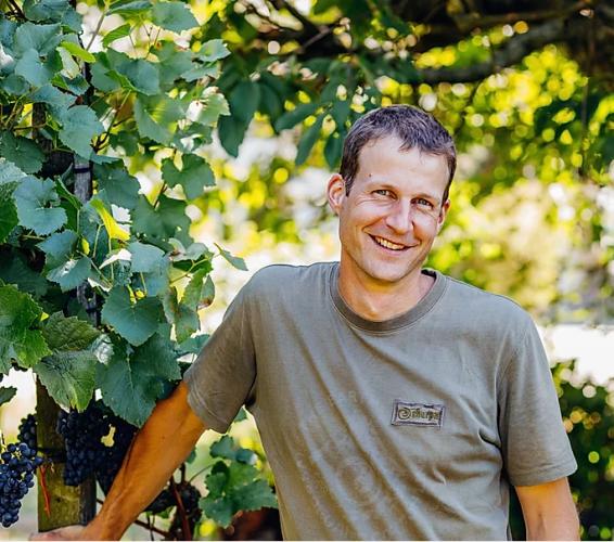 Oberflachs: Adrian's Weingut