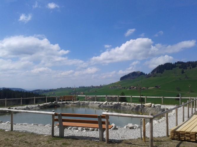 Teich Schwandtenbuch