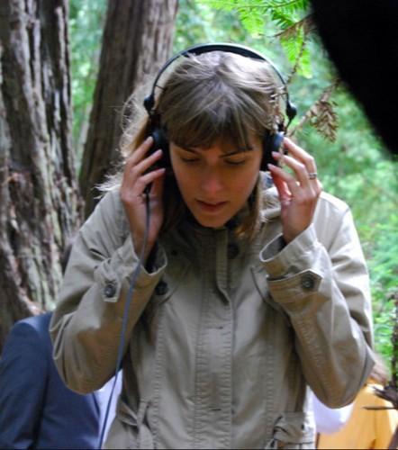 Exkursion annulliert: Stimmen aus Boden und Bäumen