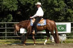 Sport&Horses Westernreitanlage