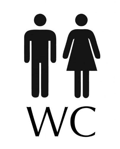 öffentliches WC Zillis I