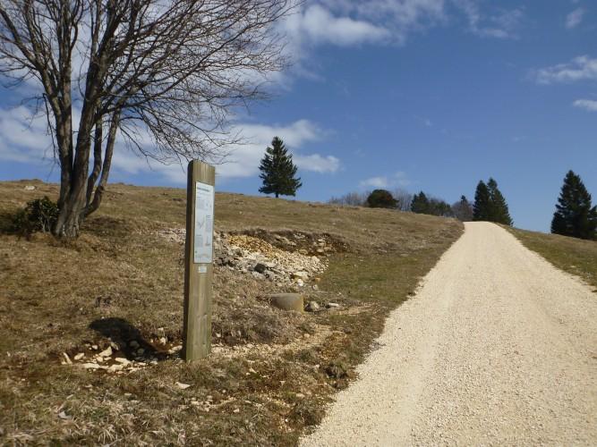 Juraweg Thal
