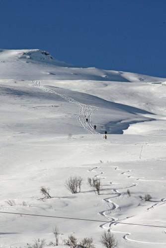 Schnee- und Lawinenkurs II