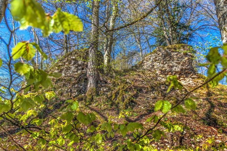 Ruine Alt Homberg