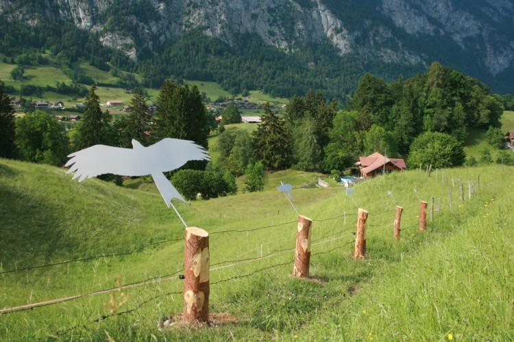 Vogelweg: Vom Rotmilan zur Wasseramsel