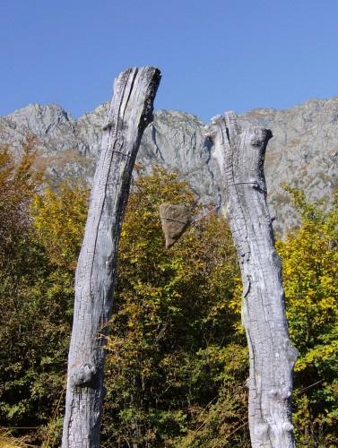Orte der Kraft im Nationalpark