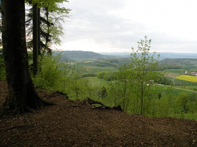 Sentiero di Permuk Wölflinswil