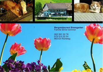 Bergrestaurant Bremgarten