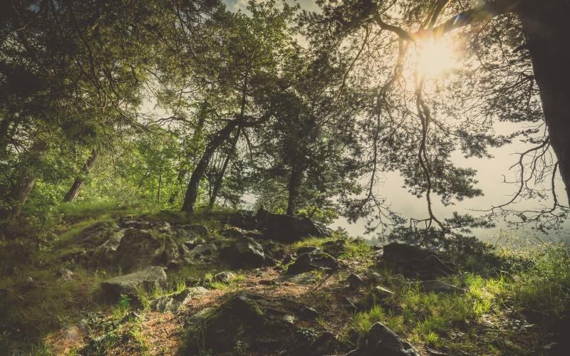 La nature, notre mère (1H - 2H)