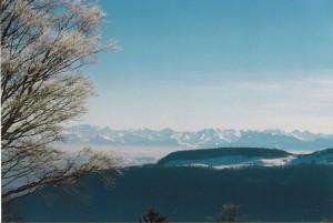 Ausgedehnter Winterspaziergang - © Naturpark Thal