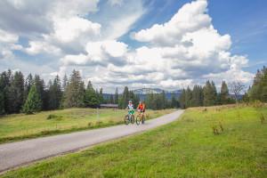Percorso ciclabile, Itinerario per biciclette elettriche