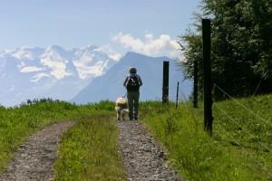 Gürbetal high-altitude trail