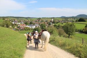 Pferde-Trekking im Jurapark Aargau