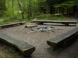 Feuerstelle Widenboden - © Wildnispark Zürich