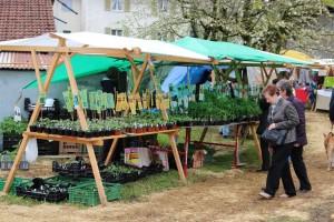 Frühlingsmarkt Wegenstetten