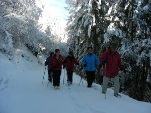Oberems snow-shoe trail - © Turtmanntal Tourismus