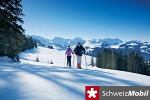 Aettenberg Trail - © Bern Tourismus