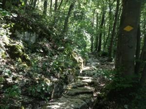Auf alten Pfaden über Bözberg
