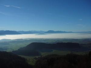 Aussichtspunkt Albisboden - © Wildnispark Zürich