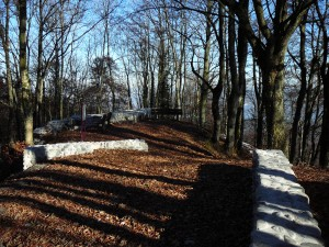 Ruine Schnabelburg - © Wildnispark Zürich
