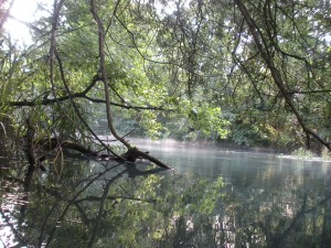 Wasserlabor am Bach (7H - 8H) - © Naturpark Pfyn-Finges