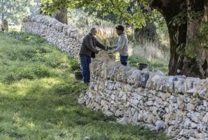 Des murs et des hommes