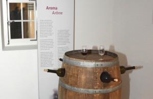 Sensorium du vin Salquenen - © GIlles Florey