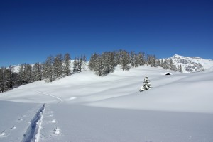 Alp Trail - © Landschaftspark Binntal