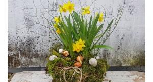 Frühlingshafte Moosschale