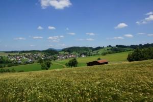 Wanderung mit Ernst: Schupfart-Mumpf - © Hanspeter Keller