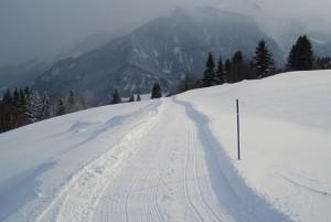 Winterwanderung Mon-Stierva - © Tourismusverein Stierva
